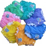 MotherEase Sandy's Fitted Diapers