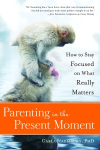 Parenting-In-Present-Moment-Cover-Small