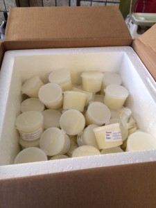 shipping carton filled with donor milk